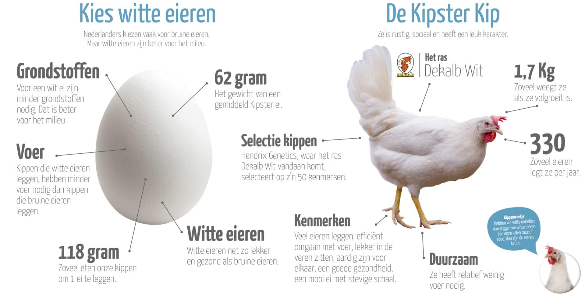 Kipster_Borden_V7A_gesleept_sqdbyw.png